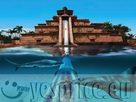 code WEDVIA55 - VIAGGI DI NOZZE WEDDING CERIMONIE DI LUSSO VENETO - VENEZIA - MESTRE - Servizio a partire da €500