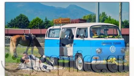 RUGGENTI e BLASONATE LUXURY RENT SERVIZIO NOLEGGIO CERIMONIA CON AUTISTA VW PULMINO T2 CELESTE  BIANCO CON AUTISTA CAMPANIA €600 – BASILICATA € 700 - LAZIO €700 - PUGLIA € 700 – CALABRIA € 700 - MARCHE € 700 - MOLISE €700 chiedi info clicca qui