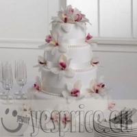 code WEDTOR14 - TORTE E CONFETTI WEDDING CERIMONIE DI LUSSO PUGLIA - BARI - Prodotti a partire da €50