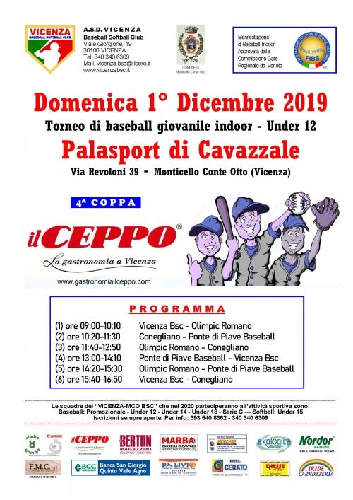 Torneo di baseball giovanile indoor - Under 12  Domenica 1° Dicembre 2019