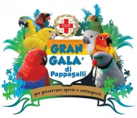 Gran Galà di pappagalli
