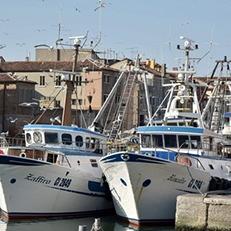 Contributi armatori società di pesca: Istruzioni dall'INPS