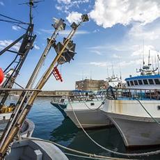 Fermo pesca 2020: Domande entro il 1° marzo 2021